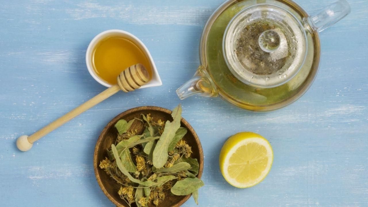Para Qué Sirve El Té De Boldo En Ayunas Conoce Sus Beneficios Y Precauciones Gastrolab